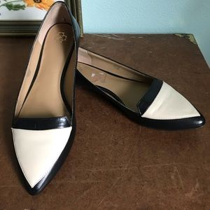Ann Taylor two tone off pointed toe flats